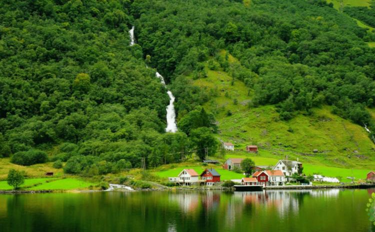Noruega se convierte en el primer país del mundo en prohibir la deforestación